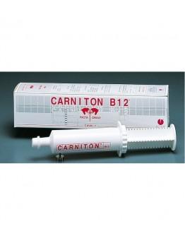 ACME srl CARNITON B12 Pasta Siringa 100g