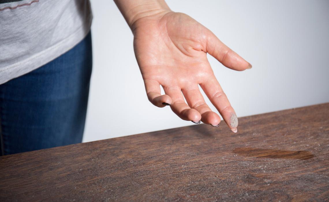 Cosa sappiamo degli acari della polvere