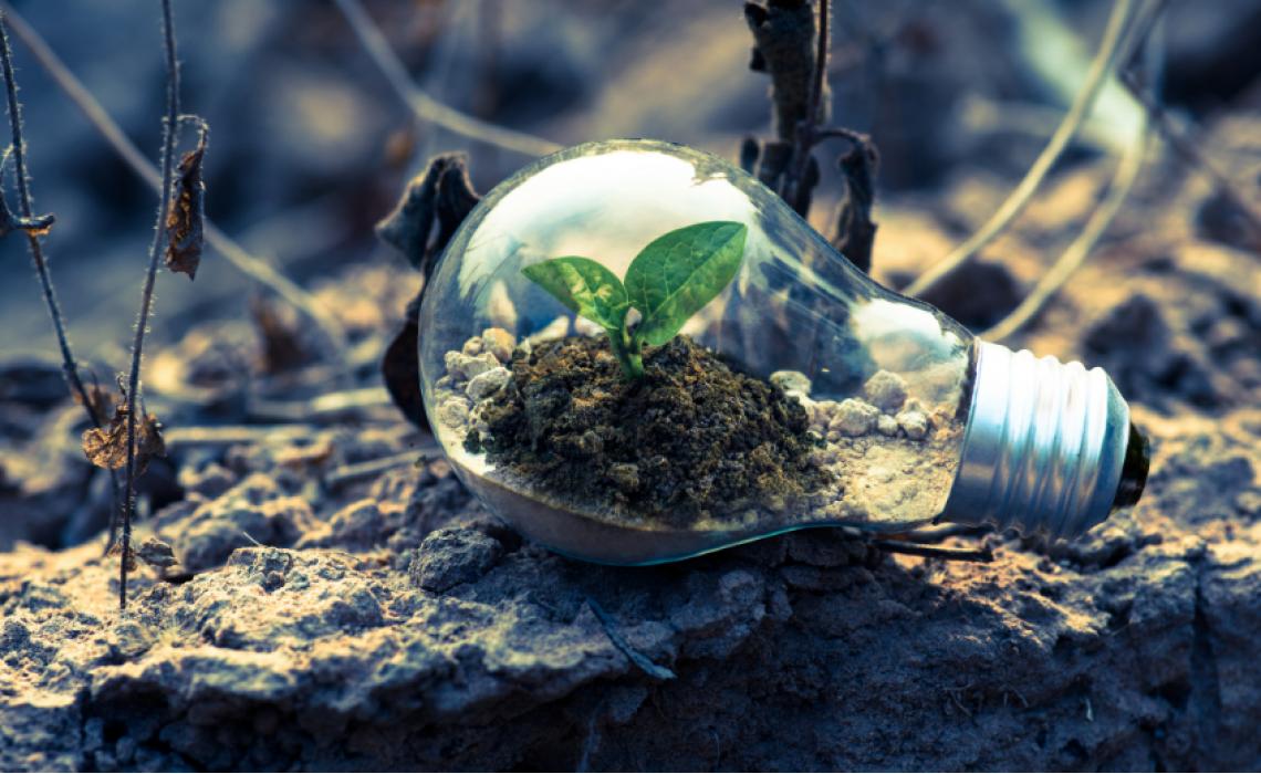 Farma Con Voi è il primo portale della salute a impatto zero di CO2