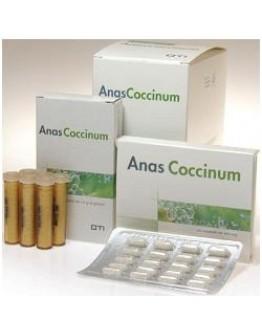 ANAS COCCINUM  H17 30 Dosi OTI